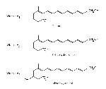 molecula vitaminas