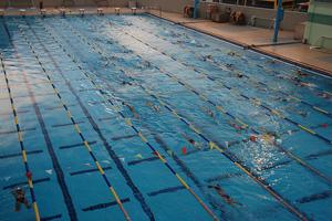 piscina entrenamientos